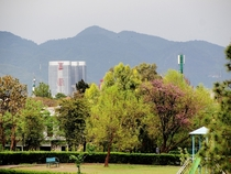 Islamabad from my bedroom window yesterday