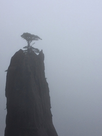 Island in the Sky Huangshan China OC