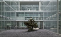 Isolated Nature - Novartis Campus by SANAA - Kazuyo Sejima and Ryue Nishizawa