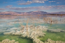Israel Color and texture in the Dead Sea writes photographer Doron Nissim