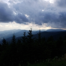It looks fake but its  real Clingmans Dome Great Smokey Mountains Tennessee