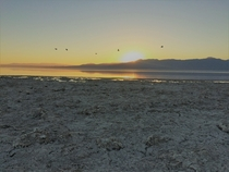 It smelled as bad as it was beautiful Salton Sea  x  OC