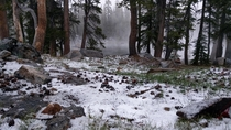 It was a wee bit chilly out that morning Taken   the lower of the Chain Lakes Yosemite CA