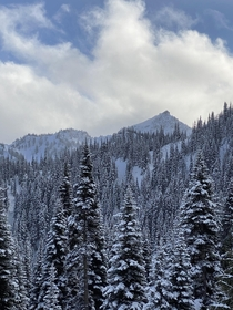 It was cloudy at Crystal Mountain yesterday intermittent snow But we had some breaks and the views remind me why I love being in the mountains in the Pacific Northwest Shot on an iPhone OC