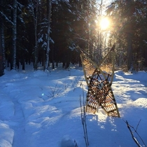 ITAP of my snowshoes while having a break from my stroll in the woods a few years ago