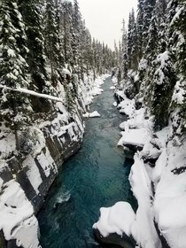 Its currently a winter wonderland in Kootenay National Park