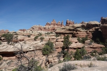 Its easy to get lost in the wilderness of the Needles District Canyonlands  OC