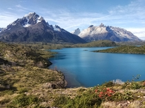 Its Spring in Patagonia Torres Del Pain National Park