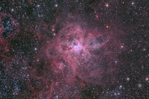 Its the largest and most complex star forming region in the entire galactic neighborhood Located in the Large Magellanic Cloud a small satellite galaxy orbiting our Milky Way galaxy the regions spidery appearance is responsible for its popular name the Ta