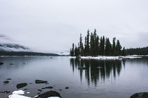 Its tough to beat the sheer beauty of the PNW even in a moody rainy day