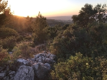 Ive been fasting for a month which kept me from climbing one of my favorite spots I appreciate it much more now- Judean Hills in Israel Palestine