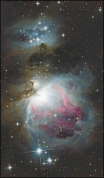 Ive been slowly learning how to capture faint interstellar dust in my own homebrew spaceporn through my backyard telescope What better subject to glory in the dust with than The Great Orion Nebula M