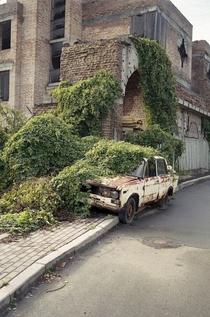 Ivy overtaking car
