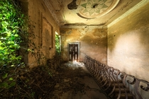 Ivy plants entering an old decaying abandoned Italian villa