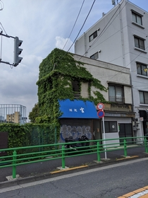 ivy slowly devours this abandoned shop Tokyo