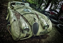Jaguar XK  Roadster by Dieter Klein Car Sculpture Park in Erkrath Germany