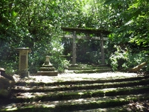Japanese Shrine left abandoned on Marianas Islands Photo by Devin Pike