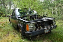 Jeep Comanche tree planter in Eastport Newfoundland  x
