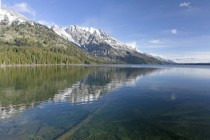 Jenny Lake Grand Teton Natl Park