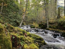Jones Creek near LoLo PassMt Hood Oregon  x