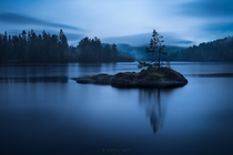 Just a singular tree on a little island with a whole range of blues during a rainy blue hour Risr Norway