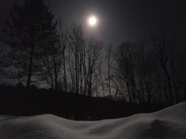 Just a snowdrift under a full moon
