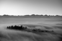 Just before sunrise the top of a hill peaks out of the fog Zurich Switzerland with the Swiss Alps in the background