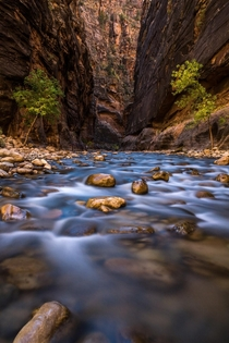 Just getting started with The Narrows Zion National Park UT