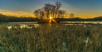Kensington Park Michigan Beautiful sunset over the cattails