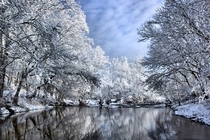 Kentucky Winter Wonderland -