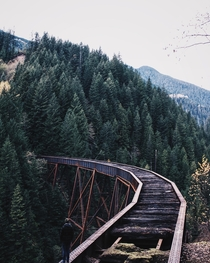 Kettle Valley Railway Bridge abandoned in  Ladner Creek Trestle Hope BC