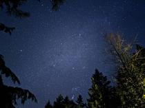 Kitsap County Washington Enjoying the night sky under voluntary lockdown