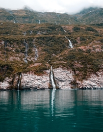 Kittiwake Nesting Grounds - College Fjord AK