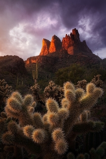 Known as the jumping cactus for a reason these cholla are as painful as they are beautiful Sunset in the Superstition Mountains Arizona  andrewhelmerphoto