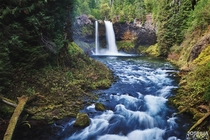 Koosah Falls Oregon in the lush forest
