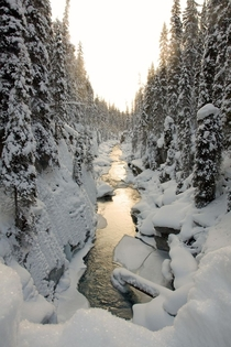 Kootenay National Park of Canada