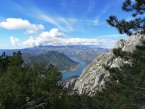 Kotor Montenegro View from Lovcen national park  x