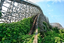 Kudzu taking over the old roller coaster at Nara Dreamland Japan Photo by Sesyjni Mordercy