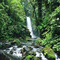 La Paz Waterfall Gardens in Costa Rica