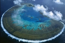 Lady Musgrave Island Great Barrier Reef Australia