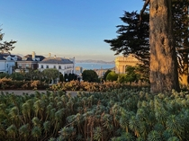 Lafayette Park in San Francisco CA  Where is your favorite park