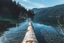 Lake Crescent - Olympic National Park Washington