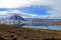 Lake in Atacama desert