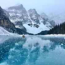 Lake Moraine - Banff National Park Canada