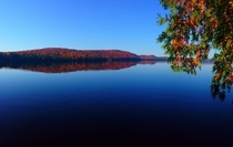 Lake of Two Rivers Algonquin Park Canada in Fall