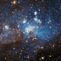 Large and small stars in harmonious coexistence in a star forming region of the Large Magellanic Cloud