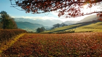 Last days of Autumn Castlerigg the Lake District