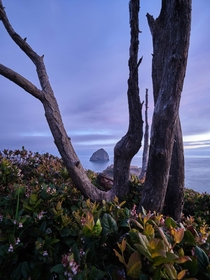 Last light at Cape Kiwanda Oregon coast