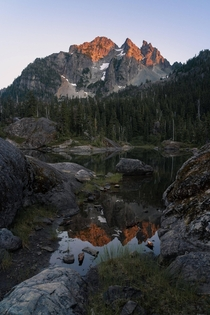Last light just off the Pacific Crest Trail in Washington