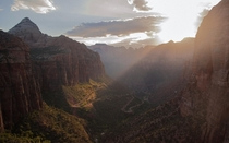 Last light shining through the canyon - Zion National Park Utah  IGcoreyraff
